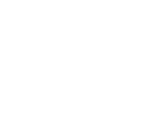logo bommelerwaard transparant